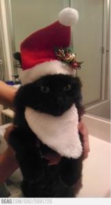 ga terlalu lucu sih yang ini, cuma pas aja lagi mau natal :P