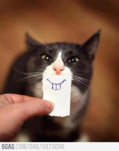 =)) ini sebenernya iseng biasa, tapi.. mata kucingnya itu lohhh sangat membantu pembangunan karakter