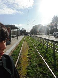 menunggu tram yang akan mengangkut kita ke madurodam (pemandangan disini kaya pemandangan desa,, asriiii bangett)