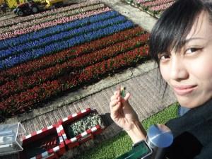 jreng-jreng-jreng,,di akhir kerja keras para pekebun itu,,keluarlah pin tulip hihihi asik asikk dapet tulip :P