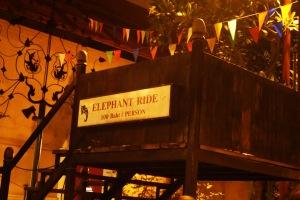 mestinya kayanya ada gajah yang bisa dinaikin,, tapi kayaknya sih gajahnya bobok kecapean abis show :P