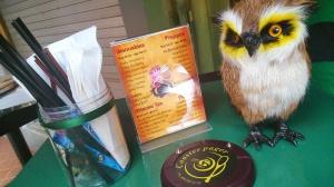 ini penampakan meja nya, disetiapmeja ada owl ini. pas banget buat bikin anak kicik sibuk sambil menanti makanan